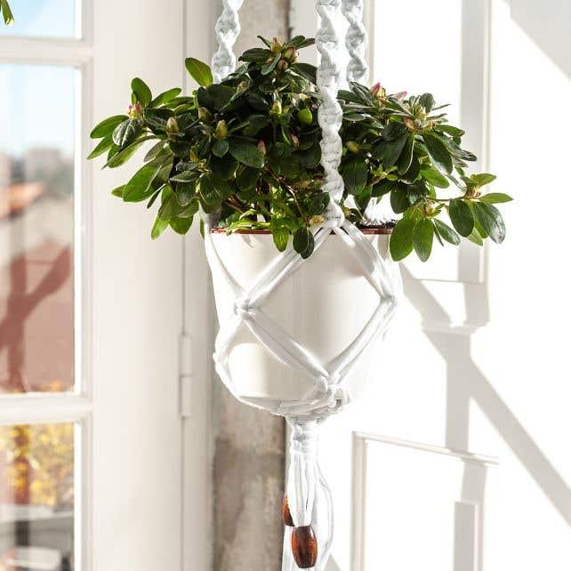 DIY Kit Zpagetti Macramé Hanging Basket Cotton White